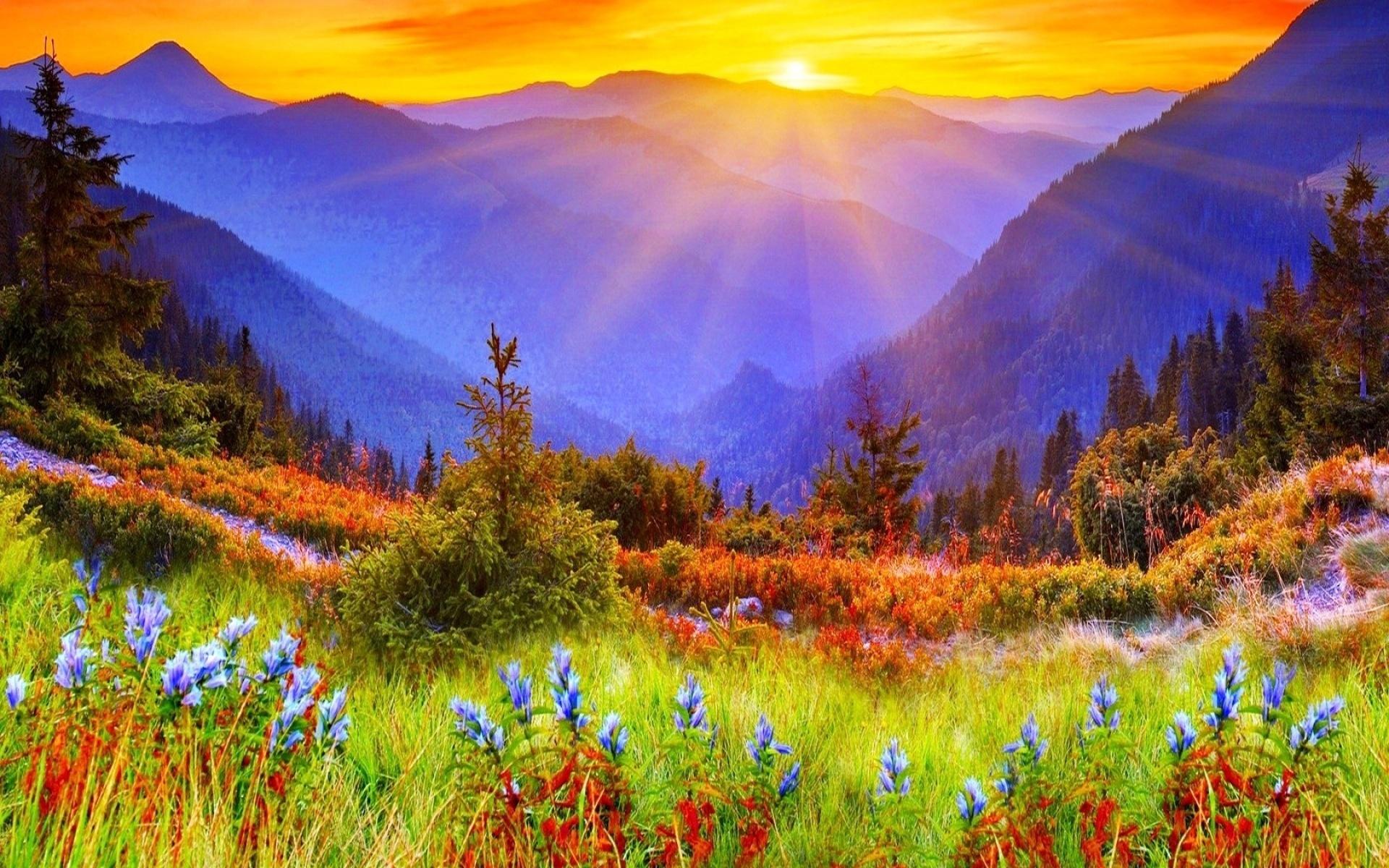 Morning Sun Beautiful Landscape Wallpapers 4 Life Mastery